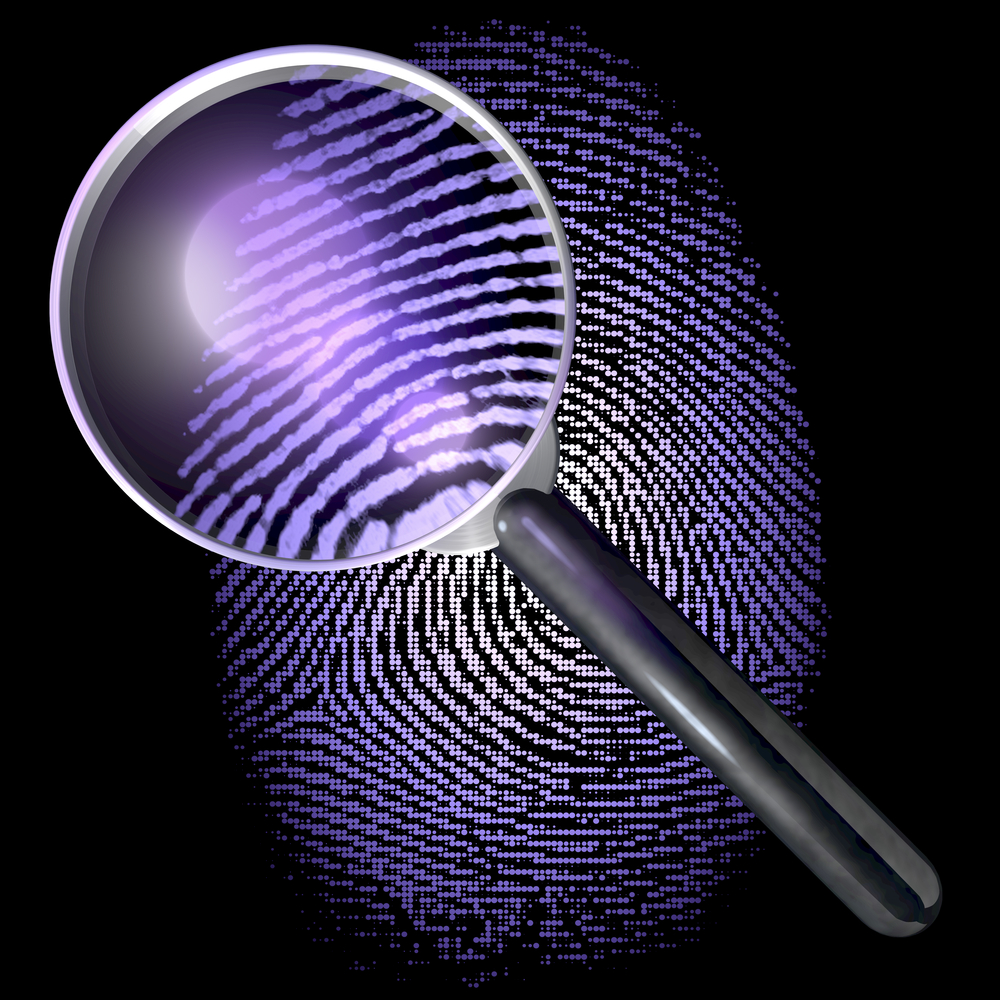 Services Offered by Matrimonial Detectives